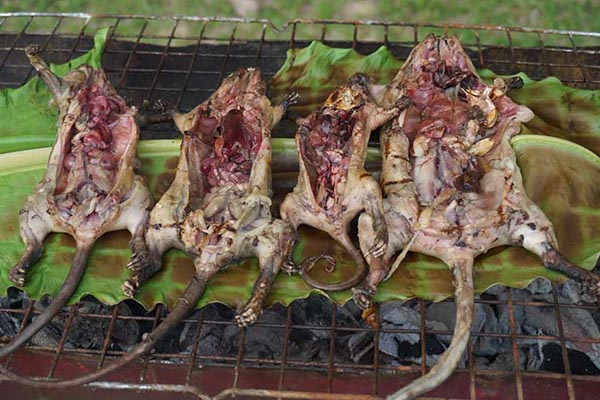 Grilled mice